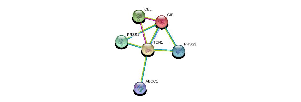 http://string-db.org/version_10/api/image/networkList?limit=0&targetmode=proteins&caller_identity=gene_cards&network_flavor=evidence&identifiers=9606.ENSP00000257264%0d%0a9606.ENSP00000257248%0d%0a9606.ENSP00000308720%0d%0a9606.ENSP00000354280%0d%0a9606.ENSP00000382342%0d%0a9606.ENSP00000264033%0d%0a