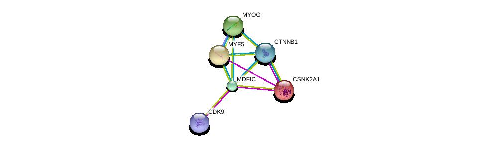 http://string-db.org/version_10/api/image/networkList?limit=0&targetmode=proteins&caller_identity=gene_cards&network_flavor=evidence&identifiers=9606.ENSP00000257724%0d%0a9606.ENSP00000241651%0d%0a9606.ENSP00000228644%0d%0a9606.ENSP00000344456%0d%0a9606.ENSP00000217244%0d%0a9606.ENSP00000362361%0d%0a
