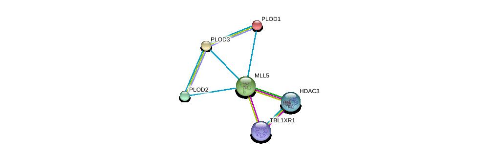 http://string-db.org/version_10/api/image/networkList?limit=0&targetmode=proteins&caller_identity=gene_cards&network_flavor=evidence&identifiers=9606.ENSP00000257745%0d%0a9606.ENSP00000223127%0d%0a9606.ENSP00000196061%0d%0a9606.ENSP00000282903%0d%0a9606.ENSP00000405574%0d%0a9606.ENSP00000302967%0d%0a
