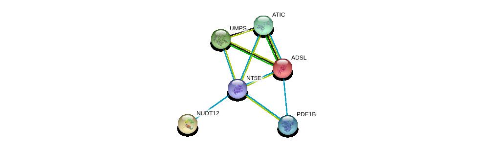 http://string-db.org/version_10/api/image/networkList?limit=0&targetmode=proteins&caller_identity=gene_cards&network_flavor=evidence&identifiers=9606.ENSP00000257770%0d%0a9606.ENSP00000216194%0d%0a9606.ENSP00000230792%0d%0a9606.ENSP00000232607%0d%0a9606.ENSP00000236959%0d%0a9606.ENSP00000243052%0d%0a