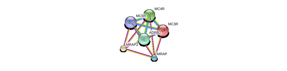 http://string-db.org/version_10/api/image/networkList?limit=0&targetmode=proteins&caller_identity=gene_cards&network_flavor=evidence&identifiers=9606.ENSP00000257776%0d%0a9606.ENSP00000243911%0d%0a9606.ENSP00000299766%0d%0a9606.ENSP00000305372%0d%0a9606.ENSP00000306697%0d%0a9606.ENSP00000318077%0d%0a