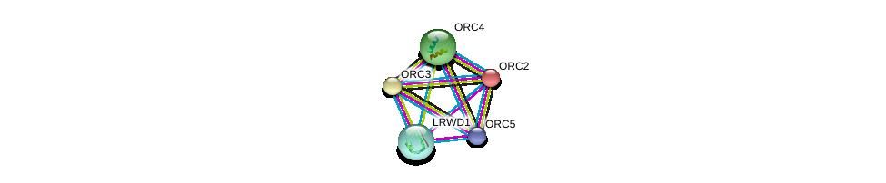 http://string-db.org/version_10/api/image/networkList?limit=0&targetmode=proteins&caller_identity=gene_cards&network_flavor=evidence&identifiers=9606.ENSP00000257789%0d%0a9606.ENSP00000234296%0d%0a9606.ENSP00000264169%0d%0a9606.ENSP00000297431%0d%0a9606.ENSP00000292616%0d%0a9606.ENSP00000292616%0d%0a