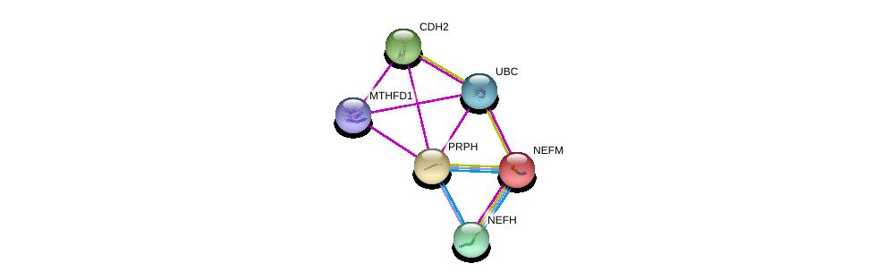 http://string-db.org/version_10/api/image/networkList?limit=0&targetmode=proteins&caller_identity=gene_cards&network_flavor=evidence&identifiers=9606.ENSP00000257860%0d%0a9606.ENSP00000344818%0d%0a9606.ENSP00000269141%0d%0a9606.ENSP00000221166%0d%0a9606.ENSP00000311997%0d%0a9606.ENSP00000450560%0d%0a