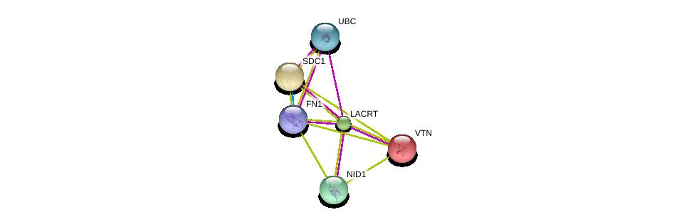 http://string-db.org/version_10/api/image/networkList?limit=0&targetmode=proteins&caller_identity=gene_cards&network_flavor=evidence&identifiers=9606.ENSP00000257867%0d%0a9606.ENSP00000254351%0d%0a9606.ENSP00000226218%0d%0a9606.ENSP00000264187%0d%0a9606.ENSP00000346839%0d%0a9606.ENSP00000344818%0d%0a