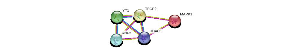 http://string-db.org/version_10/api/image/networkList?limit=0&targetmode=proteins&caller_identity=gene_cards&network_flavor=evidence&identifiers=9606.ENSP00000257915%0d%0a9606.ENSP00000356480%0d%0a9606.ENSP00000262238%0d%0a9606.ENSP00000262238%0d%0a9606.ENSP00000362649%0d%0a9606.ENSP00000215832%0d%0a