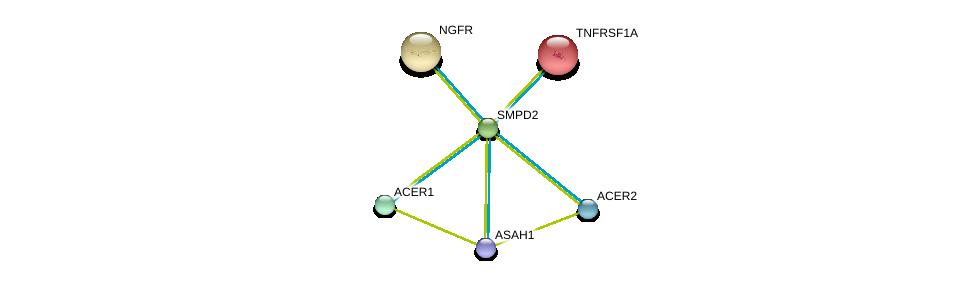 http://string-db.org/version_10/api/image/networkList?limit=0&targetmode=proteins&caller_identity=gene_cards&network_flavor=evidence&identifiers=9606.ENSP00000258052%0d%0a9606.ENSP00000301452%0d%0a9606.ENSP00000342609%0d%0a9606.ENSP00000371152%0d%0a9606.ENSP00000162749%0d%0a9606.ENSP00000172229%0d%0a