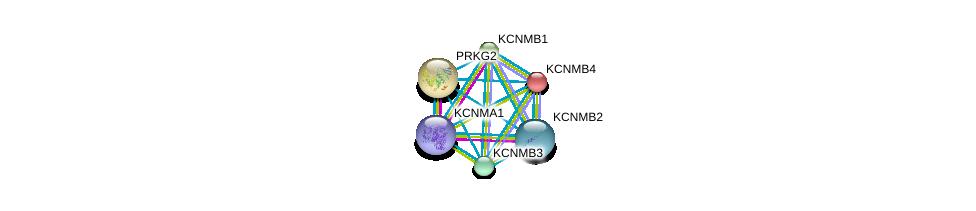 http://string-db.org/version_10/api/image/networkList?limit=0&targetmode=proteins&caller_identity=gene_cards&network_flavor=evidence&identifiers=9606.ENSP00000258111%0d%0a9606.ENSP00000385806%0d%0a9606.ENSP00000351068%0d%0a9606.ENSP00000319370%0d%0a9606.ENSP00000274629%0d%0a9606.ENSP00000264399%0d%0a