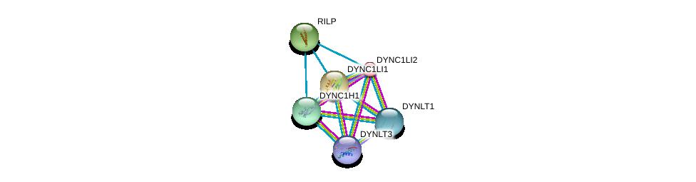 http://string-db.org/version_10/api/image/networkList?limit=0&targetmode=proteins&caller_identity=gene_cards&network_flavor=evidence&identifiers=9606.ENSP00000258198%0d%0a9606.ENSP00000356056%0d%0a9606.ENSP00000273130%0d%0a9606.ENSP00000367841%0d%0a9606.ENSP00000348965%0d%0a9606.ENSP00000301336%0d%0a