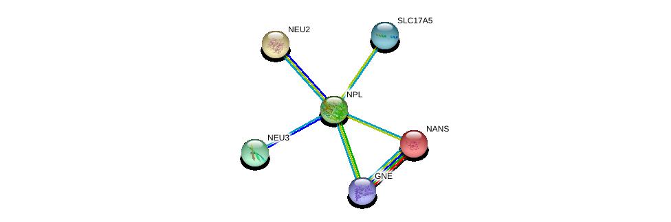 http://string-db.org/version_10/api/image/networkList?limit=0&targetmode=proteins&caller_identity=gene_cards&network_flavor=evidence&identifiers=9606.ENSP00000258317%0d%0a9606.ENSP00000210444%0d%0a9606.ENSP00000294064%0d%0a9606.ENSP00000348019%0d%0a9606.ENSP00000379839%0d%0a9606.ENSP00000233840%0d%0a