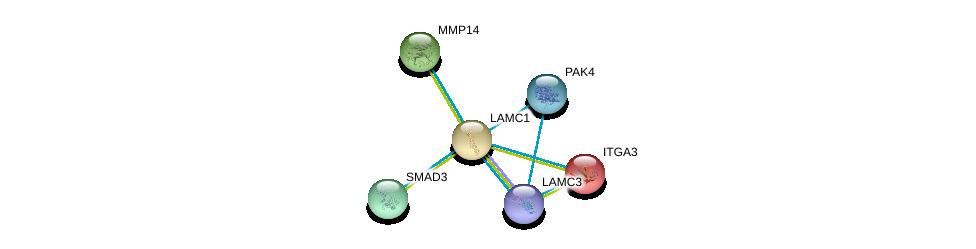http://string-db.org/version_10/api/image/networkList?limit=0&targetmode=proteins&caller_identity=gene_cards&network_flavor=evidence&identifiers=9606.ENSP00000258341%0d%0a9606.ENSP00000308208%0d%0a9606.ENSP00000332973%0d%0a9606.ENSP00000007722%0d%0a9606.ENSP00000351049%0d%0a9606.ENSP00000354360%0d%0a