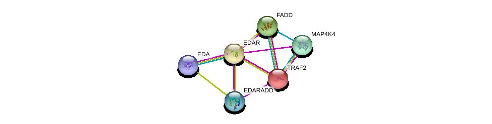 http://string-db.org/version_10/api/image/networkList?limit=0&targetmode=proteins&caller_identity=gene_cards&network_flavor=evidence&identifiers=9606.ENSP00000258443%0d%0a9606.ENSP00000335076%0d%0a9606.ENSP00000363680%0d%0a9606.ENSP00000247668%0d%0a9606.ENSP00000301838%0d%0a9606.ENSP00000314363%0d%0a