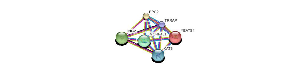http://string-db.org/version_10/api/image/networkList?limit=0&targetmode=proteins&caller_identity=gene_cards&network_flavor=evidence&identifiers=9606.ENSP00000258484%0d%0a9606.ENSP00000340330%0d%0a9606.ENSP00000247843%0d%0a9606.ENSP00000331310%0d%0a9606.ENSP00000347733%0d%0a9606.ENSP00000307183%0d%0a