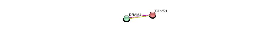 http://string-db.org/version_10/api/image/networkList?limit=0&targetmode=proteins&caller_identity=gene_cards&network_flavor=evidence&identifiers=9606.ENSP00000258534%0d%0a9606.ENSP00000235307%0d%0a