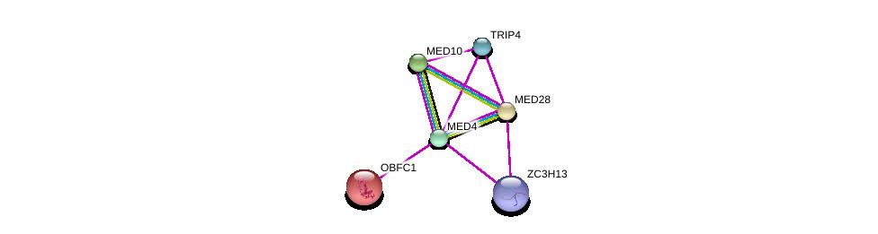http://string-db.org/version_10/api/image/networkList?limit=0&targetmode=proteins&caller_identity=gene_cards&network_flavor=evidence&identifiers=9606.ENSP00000258648%0d%0a9606.ENSP00000224950%0d%0a9606.ENSP00000237380%0d%0a9606.ENSP00000255764%0d%0a9606.ENSP00000261884%0d%0a9606.ENSP00000282007%0d%0a