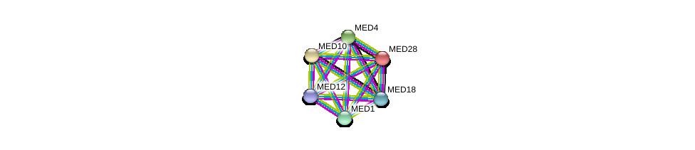 http://string-db.org/version_10/api/image/networkList?limit=0&targetmode=proteins&caller_identity=gene_cards&network_flavor=evidence&identifiers=9606.ENSP00000258648%0d%0a9606.ENSP00000363193%0d%0a9606.ENSP00000300651%0d%0a9606.ENSP00000255764%0d%0a9606.ENSP00000362948%0d%0a9606.ENSP00000237380%0d%0a