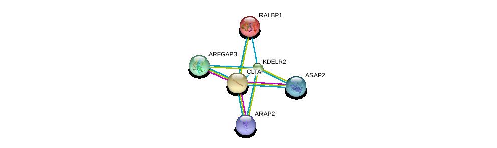 http://string-db.org/version_10/api/image/networkList?limit=0&targetmode=proteins&caller_identity=gene_cards&network_flavor=evidence&identifiers=9606.ENSP00000258739%0d%0a9606.ENSP00000019317%0d%0a9606.ENSP00000263245%0d%0a9606.ENSP00000281419%0d%0a9606.ENSP00000302895%0d%0a9606.ENSP00000242285%0d%0a