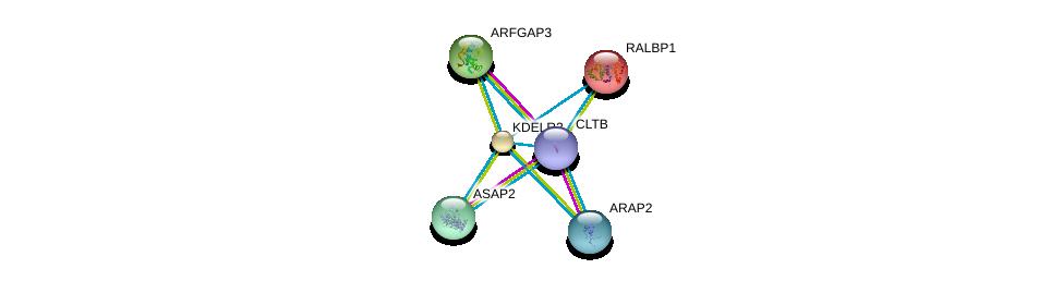 http://string-db.org/version_10/api/image/networkList?limit=0&targetmode=proteins&caller_identity=gene_cards&network_flavor=evidence&identifiers=9606.ENSP00000258739%0d%0a9606.ENSP00000019317%0d%0a9606.ENSP00000263245%0d%0a9606.ENSP00000281419%0d%0a9606.ENSP00000302895%0d%0a9606.ENSP00000309415%0d%0a