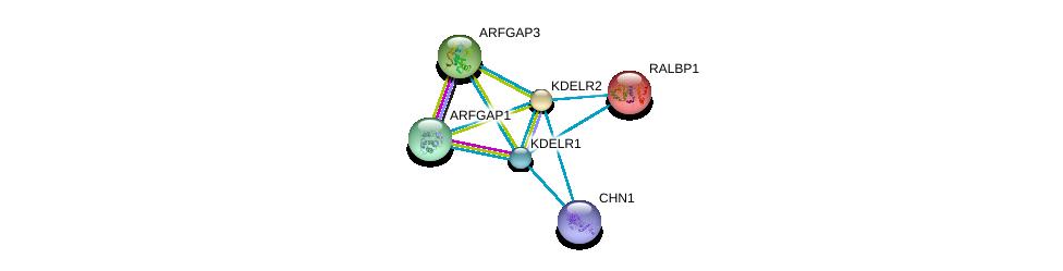http://string-db.org/version_10/api/image/networkList?limit=0&targetmode=proteins&caller_identity=gene_cards&network_flavor=evidence&identifiers=9606.ENSP00000258739%0d%0a9606.ENSP00000386741%0d%0a9606.ENSP00000263245%0d%0a9606.ENSP00000329471%0d%0a9606.ENSP00000314615%0d%0a9606.ENSP00000019317%0d%0a