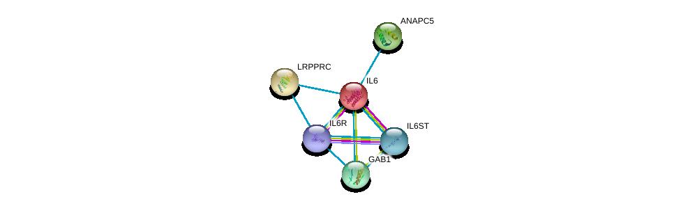 http://string-db.org/version_10/api/image/networkList?limit=0&targetmode=proteins&caller_identity=gene_cards&network_flavor=evidence&identifiers=9606.ENSP00000258743%0d%0a9606.ENSP00000357470%0d%0a9606.ENSP00000338799%0d%0a9606.ENSP00000260665%0d%0a9606.ENSP00000261819%0d%0a9606.ENSP00000262995%0d%0a