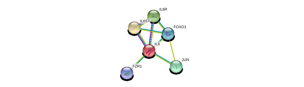 http://string-db.org/version_10/api/image/networkList?limit=0&targetmode=proteins&caller_identity=gene_cards&network_flavor=evidence&identifiers=9606.ENSP00000258743%0d%0a9606.ENSP00000357470%0d%0a9606.ENSP00000338799%0d%0a9606.ENSP00000368880%0d%0a9606.ENSP00000360266%0d%0a9606.ENSP00000378529%0d%0a