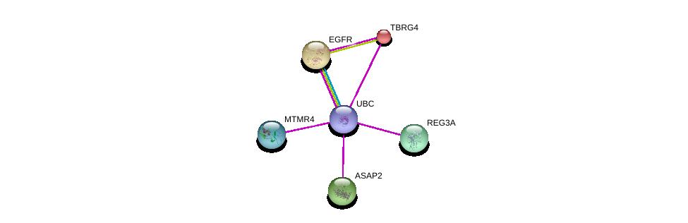 http://string-db.org/version_10/api/image/networkList?limit=0&targetmode=proteins&caller_identity=gene_cards&network_flavor=evidence&identifiers=9606.ENSP00000258770%0d%0a9606.ENSP00000344818%0d%0a9606.ENSP00000275493%0d%0a9606.ENSP00000325285%0d%0a9606.ENSP00000304311%0d%0a9606.ENSP00000281419%0d%0a