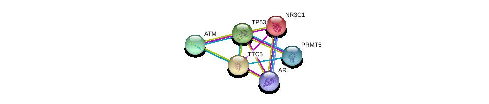 http://string-db.org/version_10/api/image/networkList?limit=0&targetmode=proteins&caller_identity=gene_cards&network_flavor=evidence&identifiers=9606.ENSP00000258821%0d%0a9606.ENSP00000278616%0d%0a9606.ENSP00000319169%0d%0a9606.ENSP00000269305%0d%0a9606.ENSP00000363822%0d%0a9606.ENSP00000231509%0d%0a