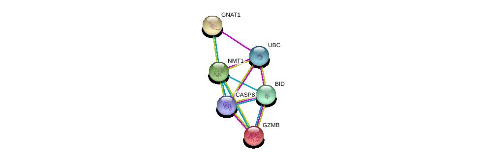 http://string-db.org/version_10/api/image/networkList?limit=0&targetmode=proteins&caller_identity=gene_cards&network_flavor=evidence&identifiers=9606.ENSP00000258960%0d%0a9606.ENSP00000351273%0d%0a9606.ENSP00000232461%0d%0a9606.ENSP00000216341%0d%0a9606.ENSP00000318822%0d%0a9606.ENSP00000344818%0d%0a