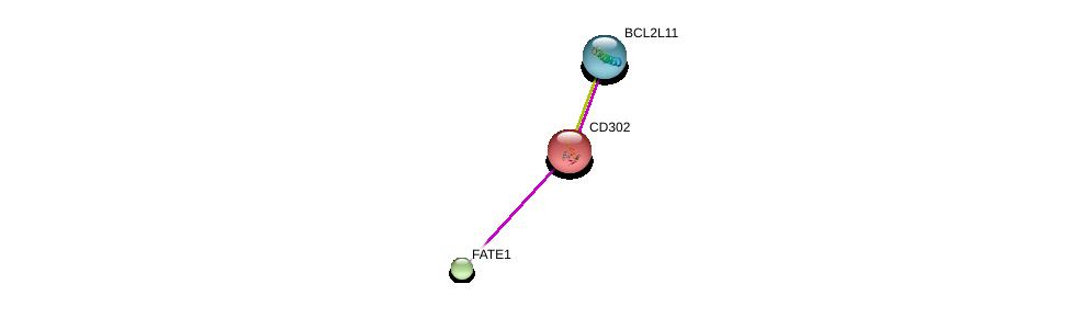 http://string-db.org/version_10/api/image/networkList?limit=0&targetmode=proteins&caller_identity=gene_cards&network_flavor=evidence&identifiers=9606.ENSP00000259053%0d%0a9606.ENSP00000376943%0d%0a9606.ENSP00000359375%0d%0a