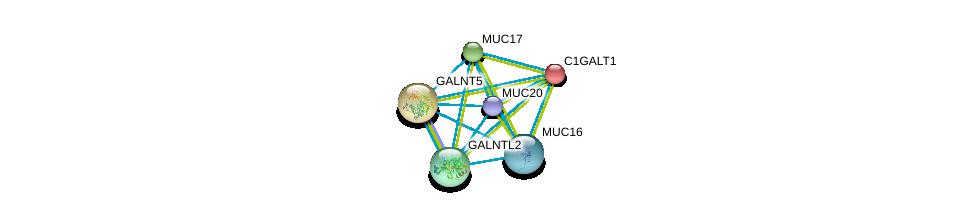 http://string-db.org/version_10/api/image/networkList?limit=0&targetmode=proteins&caller_identity=gene_cards&network_flavor=evidence&identifiers=9606.ENSP00000259056%0d%0a9606.ENSP00000302716%0d%0a9606.ENSP00000396774%0d%0a9606.ENSP00000381008%0d%0a9606.ENSP00000344260%0d%0a9606.ENSP00000223122%0d%0a