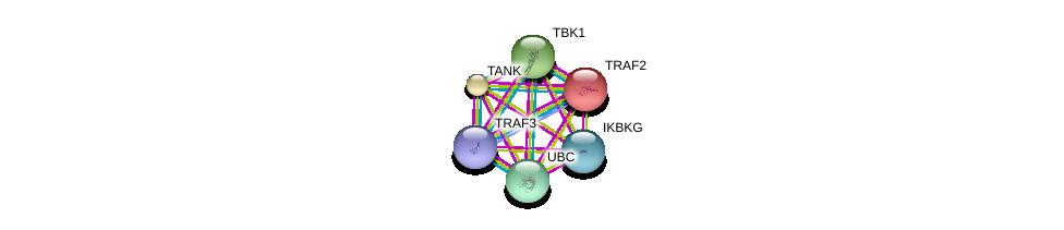 http://string-db.org/version_10/api/image/networkList?limit=0&targetmode=proteins&caller_identity=gene_cards&network_flavor=evidence&identifiers=9606.ENSP00000259075%0d%0a9606.ENSP00000329967%0d%0a9606.ENSP00000247668%0d%0a9606.ENSP00000344818%0d%0a9606.ENSP00000376500%0d%0a9606.ENSP00000358622%0d%0a