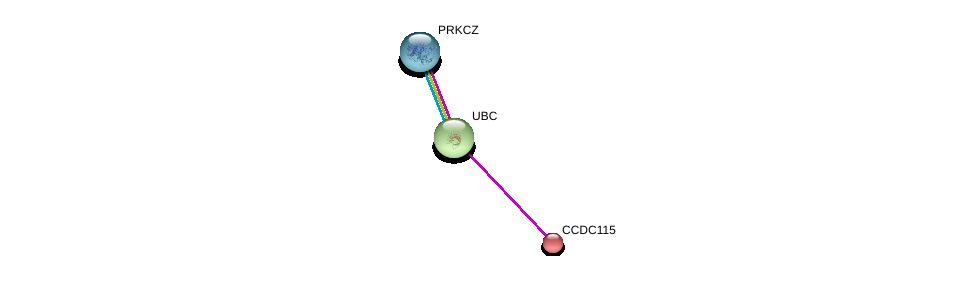 http://string-db.org/version_10/api/image/networkList?limit=0&targetmode=proteins&caller_identity=gene_cards&network_flavor=evidence&identifiers=9606.ENSP00000259229%0d%0a9606.ENSP00000344818%0d%0a9606.ENSP00000367830%0d%0a