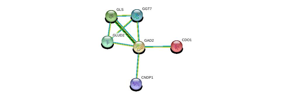 http://string-db.org/version_10/api/image/networkList?limit=0&targetmode=proteins&caller_identity=gene_cards&network_flavor=evidence&identifiers=9606.ENSP00000259271%0d%0a9606.ENSP00000327589%0d%0a9606.ENSP00000250535%0d%0a9606.ENSP00000338964%0d%0a9606.ENSP00000317379%0d%0a9606.ENSP00000351682%0d%0a