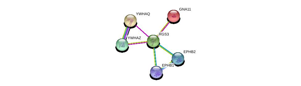 http://string-db.org/version_10/api/image/networkList?limit=0&targetmode=proteins&caller_identity=gene_cards&network_flavor=evidence&identifiers=9606.ENSP00000259406%0d%0a9606.ENSP00000309503%0d%0a9606.ENSP00000381097%0d%0a9606.ENSP00000363763%0d%0a9606.ENSP00000078429%0d%0a9606.ENSP00000238081%0d%0a