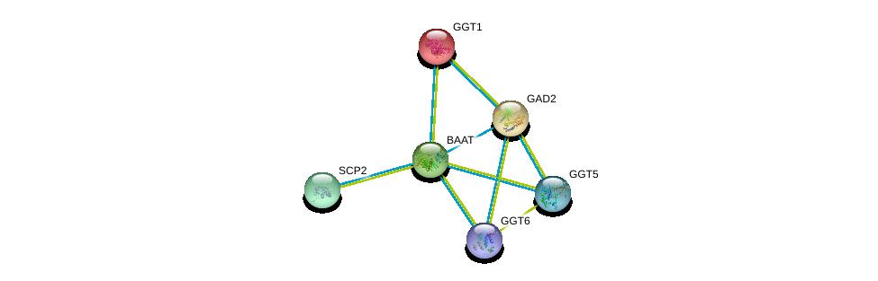 http://string-db.org/version_10/api/image/networkList?limit=0&targetmode=proteins&caller_identity=gene_cards&network_flavor=evidence&identifiers=9606.ENSP00000259407%0d%0a9606.ENSP00000248923%0d%0a9606.ENSP00000259271%0d%0a9606.ENSP00000458307%0d%0a9606.ENSP00000381340%0d%0a9606.ENSP00000360569%0d%0a