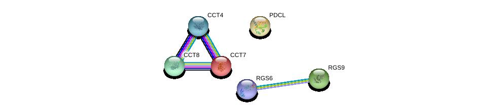 http://string-db.org/version_10/api/image/networkList?limit=0&targetmode=proteins&caller_identity=gene_cards&network_flavor=evidence&identifiers=9606.ENSP00000259467%0d%0a9606.ENSP00000377958%0d%0a9606.ENSP00000262406%0d%0a9606.ENSP00000258091%0d%0a9606.ENSP00000286788%0d%0a9606.ENSP00000451030%0d%0a