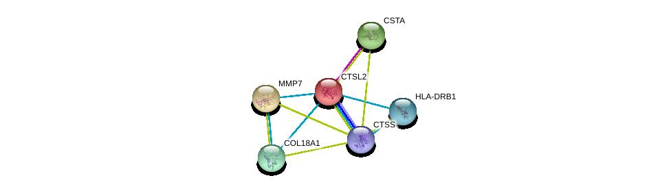 http://string-db.org/version_10/api/image/networkList?limit=0&targetmode=proteins&caller_identity=gene_cards&network_flavor=evidence&identifiers=9606.ENSP00000259470%0d%0a9606.ENSP00000260227%0d%0a9606.ENSP00000264474%0d%0a9606.ENSP00000347665%0d%0a9606.ENSP00000353099%0d%0a9606.ENSP00000357981%0d%0a