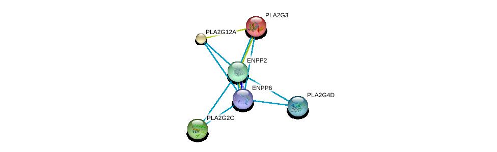 http://string-db.org/version_10/api/image/networkList?limit=0&targetmode=proteins&caller_identity=gene_cards&network_flavor=evidence&identifiers=9606.ENSP00000259486%0d%0a9606.ENSP00000215885%0d%0a9606.ENSP00000243501%0d%0a9606.ENSP00000247992%0d%0a9606.ENSP00000290472%0d%0a9606.ENSP00000296741%0d%0a