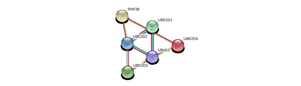 http://string-db.org/version_10/api/image/networkList?limit=0&targetmode=proteins&caller_identity=gene_cards&network_flavor=evidence&identifiers=9606.ENSP00000259605%0d%0a9606.ENSP00000381717%0d%0a9606.ENSP00000388107%0d%0a9606.ENSP00000363019%0d%0a9606.ENSP00000349722%0d%0a9606.ENSP00000222402%0d%0a