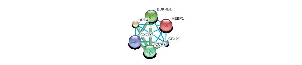 http://string-db.org/version_10/api/image/networkList?limit=0&targetmode=proteins&caller_identity=gene_cards&network_flavor=evidence&identifiers=9606.ENSP00000259607%0d%0a9606.ENSP00000246657%0d%0a9606.ENSP00000272928%0d%0a9606.ENSP00000014930%0d%0a9606.ENSP00000176183%0d%0a9606.ENSP00000216629%0d%0a