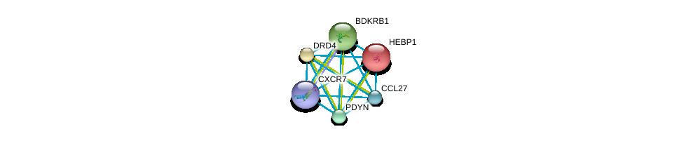 http://string-db.org/version_10/api/image/networkList?limit=0&targetmode=proteins&caller_identity=gene_cards&network_flavor=evidence&identifiers=9606.ENSP00000259631%0d%0a9606.ENSP00000272928%0d%0a9606.ENSP00000014930%0d%0a9606.ENSP00000176183%0d%0a9606.ENSP00000216629%0d%0a9606.ENSP00000217305%0d%0a