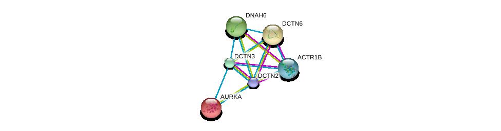 http://string-db.org/version_10/api/image/networkList?limit=0&targetmode=proteins&caller_identity=gene_cards&network_flavor=evidence&identifiers=9606.ENSP00000259632%0d%0a9606.ENSP00000289228%0d%0a9606.ENSP00000408910%0d%0a9606.ENSP00000216911%0d%0a9606.ENSP00000221114%0d%0a9606.ENSP00000237449%0d%0a