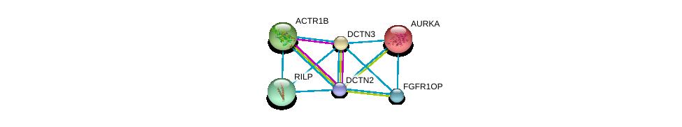 http://string-db.org/version_10/api/image/networkList?limit=0&targetmode=proteins&caller_identity=gene_cards&network_flavor=evidence&identifiers=9606.ENSP00000259632%0d%0a9606.ENSP00000289228%0d%0a9606.ENSP00000408910%0d%0a9606.ENSP00000301336%0d%0a9606.ENSP00000355812%0d%0a9606.ENSP00000216911%0d%0a