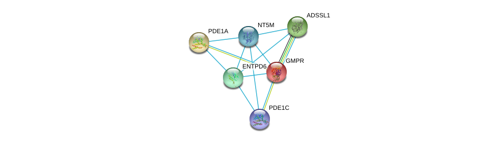 http://string-db.org/version_10/api/image/networkList?limit=0&targetmode=proteins&caller_identity=gene_cards&network_flavor=evidence&identifiers=9606.ENSP00000259727%0d%0a9606.ENSP00000331574%0d%0a9606.ENSP00000333019%0d%0a9606.ENSP00000365840%0d%0a9606.ENSP00000379496%0d%0a9606.ENSP00000373674%0d%0a