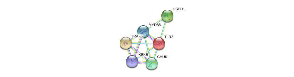 http://string-db.org/version_10/api/image/networkList?limit=0&targetmode=proteins&caller_identity=gene_cards&network_flavor=evidence&identifiers=9606.ENSP00000260010%0d%0a9606.ENSP00000401399%0d%0a9606.ENSP00000359424%0d%0a9606.ENSP00000430684%0d%0a9606.ENSP00000337853%0d%0a9606.ENSP00000340019%0d%0a