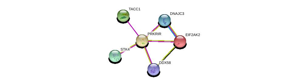 http://string-db.org/version_10/api/image/networkList?limit=0&targetmode=proteins&caller_identity=gene_cards&network_flavor=evidence&identifiers=9606.ENSP00000260045%0d%0a9606.ENSP00000361892%0d%0a9606.ENSP00000321703%0d%0a9606.ENSP00000233057%0d%0a9606.ENSP00000369213%0d%0a9606.ENSP00000365991%0d%0a