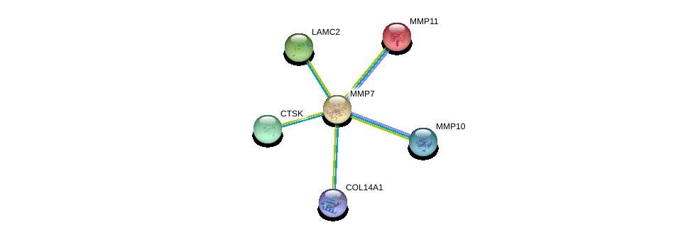 http://string-db.org/version_10/api/image/networkList?limit=0&targetmode=proteins&caller_identity=gene_cards&network_flavor=evidence&identifiers=9606.ENSP00000260227%0d%0a9606.ENSP00000215743%0d%0a9606.ENSP00000264144%0d%0a9606.ENSP00000271651%0d%0a9606.ENSP00000279441%0d%0a9606.ENSP00000297848%0d%0a