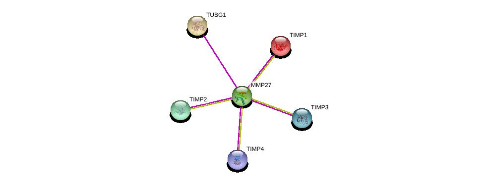 http://string-db.org/version_10/api/image/networkList?limit=0&targetmode=proteins&caller_identity=gene_cards&network_flavor=evidence&identifiers=9606.ENSP00000260229%0d%0a9606.ENSP00000251413%0d%0a9606.ENSP00000287814%0d%0a9606.ENSP00000266085%0d%0a9606.ENSP00000262768%0d%0a9606.ENSP00000218388%0d%0a