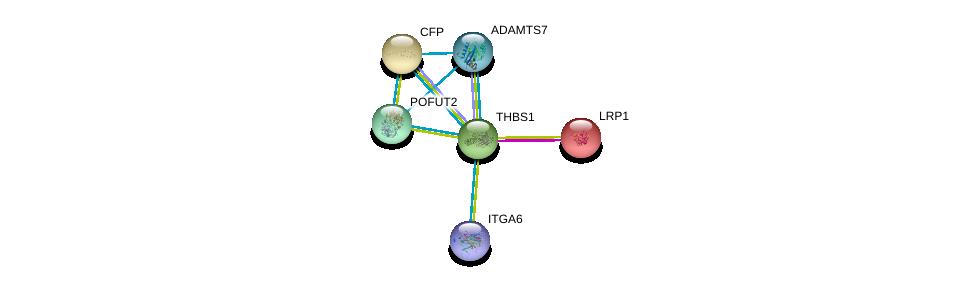 http://string-db.org/version_10/api/image/networkList?limit=0&targetmode=proteins&caller_identity=gene_cards&network_flavor=evidence&identifiers=9606.ENSP00000260356%0d%0a9606.ENSP00000243077%0d%0a9606.ENSP00000339613%0d%0a9606.ENSP00000247153%0d%0a9606.ENSP00000373472%0d%0a9606.ENSP00000386896%0d%0a