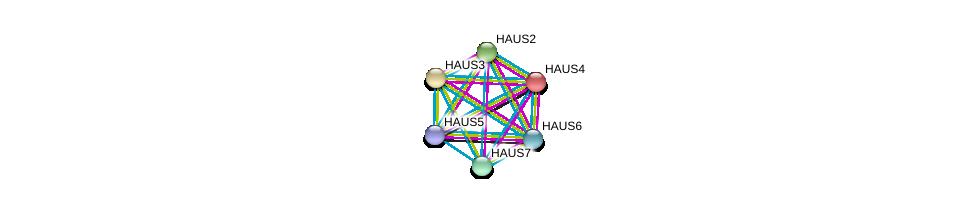 http://string-db.org/version_10/api/image/networkList?limit=0&targetmode=proteins&caller_identity=gene_cards&network_flavor=evidence&identifiers=9606.ENSP00000260372%0d%0a9606.ENSP00000369871%0d%0a9606.ENSP00000206474%0d%0a9606.ENSP00000243706%0d%0a9606.ENSP00000359239%0d%0a9606.ENSP00000439056%0d%0a
