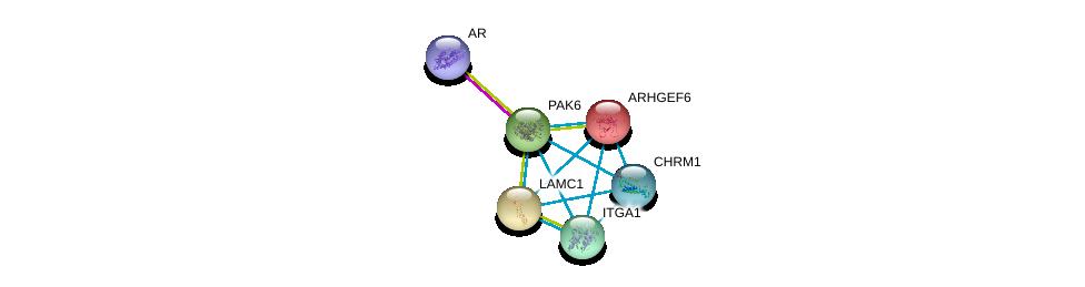 http://string-db.org/version_10/api/image/networkList?limit=0&targetmode=proteins&caller_identity=gene_cards&network_flavor=evidence&identifiers=9606.ENSP00000260404%0d%0a9606.ENSP00000363822%0d%0a9606.ENSP00000258341%0d%0a9606.ENSP00000282588%0d%0a9606.ENSP00000306490%0d%0a9606.ENSP00000250617%0d%0a